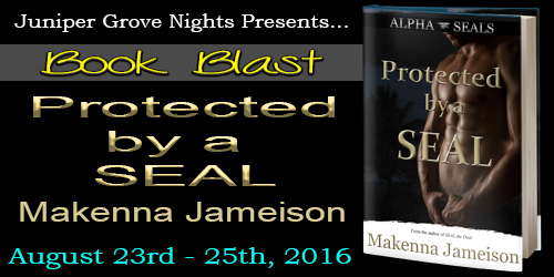 Protected by a SEAL Blast Banner