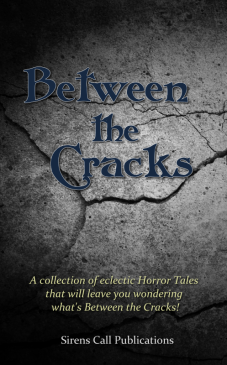 BetweenTheCracks_Promotional_800px