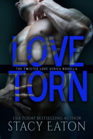 2- LoveTorn_400x600