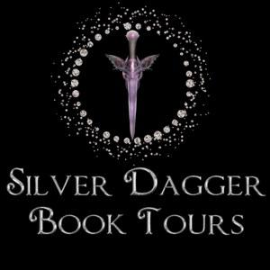 SD Tours logo