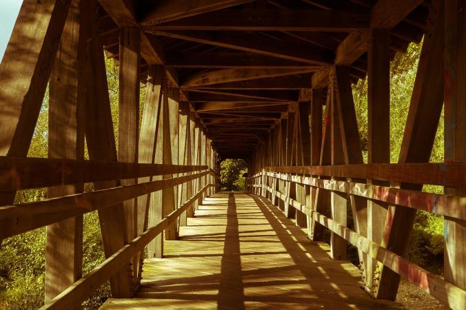 bridge-4562163_1920